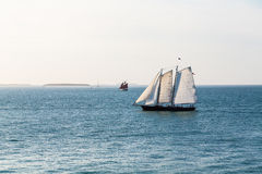 White Sails with Red Sails in Distance stock photo