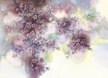 Free White Sakura Flower Blossom On A Dark Background Watercolor. Royalty Free Stock Photo - 145852745
