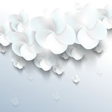 White sakura flower elements background Stock Images