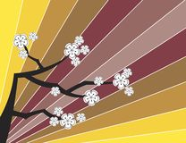 White sakuras on retro stripes Royalty Free Stock Photos