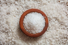 White salt in a wooden bowl Stock Image