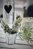 Incense of white salvia. White salvia incense. Salvia ritual concept. White sage, scared sage, california sage, bee sage Royalty Free Stock Photography