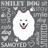 White Samoyed dog Stock Photography