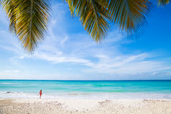 White sand, azure water and palm trees Stock Images