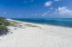White Sand Beach. A lone figure walks this beautiful island beach in the caribbean Stock Images