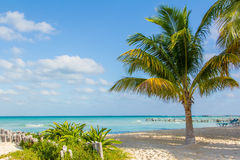 White Sand Beach. North Beach in Isla Mujeres, Mexico Royalty Free Stock Images