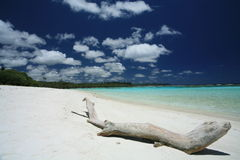 White sand beach Stock Image