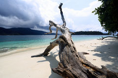 White sand beach in Adang Rawi Island, Tarutao National Park, Sa. Tun, South of Thailand Stock Image