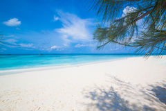 White sand beach  of Andaman Sea in Tachai island Royalty Free Stock Images