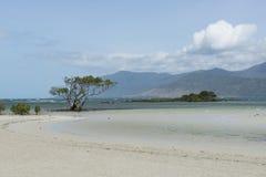 White sand beach, Australia Royalty Free Stock Photo