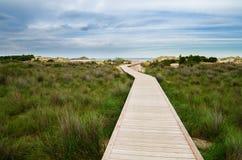 White sand beach of Chia, Sardinia Royalty Free Stock Photos
