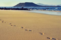 White sand beach in Corralejo, Fuerteventura, Cana Royalty Free Stock Images