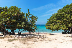 White sand beach in Cuba Stock Photography