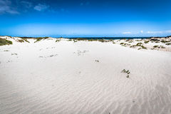 White sand beach in the evening, Lanzarote, Canary islands, Spai Royalty Free Stock Images