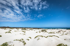 White sand beach in the evening, Lanzarote, Canary islands, Spai Stock Image