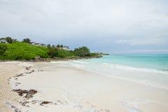 Beach in Exuma Bahamas. A white sand beach in the Exuma on the Bahamas royalty free stock images