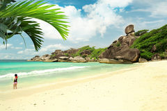 White sand beach island with coconut palm Royalty Free Stock Photo