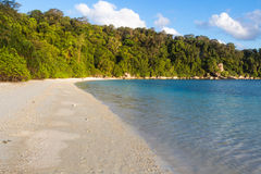 White sand beach with jungle Royalty Free Stock Photo