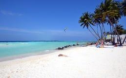 White sand beach, Maldives Stock Image