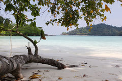 White sand beach. Mu Koh Surin National Park, THAILAND Stock Images