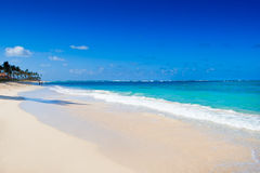 White sand beach near blue ocean Royalty Free Stock Images
