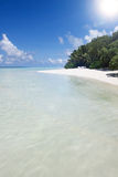 White sand  beach at noon Stock Photography