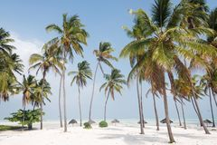 Beautiful white sand beach with palm trees, Zanzibar,. White sand beach with palm trees, Zanzibar, Tanzania Stock Images