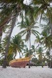White sand beach with palm trees, Zanzibar. Tanzania Royalty Free Stock Photography