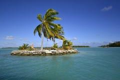 White Sand Beach in Polynesia Stock Image