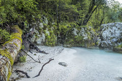 White sand beach at the river Stock Image