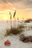 White Sand Beach at Sunset Stock Images