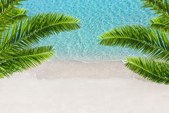 White sand beach and tropical sea with palm tree. Stock Photography