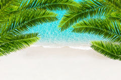 White sand beach and tropical sea with palm tree. Resort background Royalty Free Stock Photo