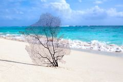 White sand beach, turquoise sea on blue sky with white clouds background stock images
