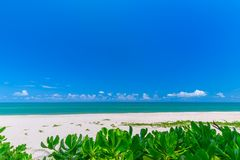 White sand beach , turquoise water and green lush trees on the foreground in south of Thailand royalty free stock photography
