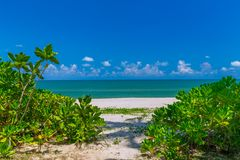 White sand beach , turquoise water and green lush trees on the foreground in south of Thailand.  stock photo