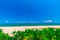 White sand beach , turquoise water and green lush trees on the foreground in south of Thailand.  stock image
