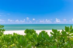 White sand beach , turquoise water and green lush trees on the foreground in south of Thailand.  stock photography