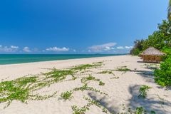 White sand beach , turquoise water and green lush trees on the foreground in south of Thailand.  royalty free stock images