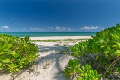 White sand beach , turquoise water and green lush trees on the foreground in south of Thailand.  royalty free stock photos