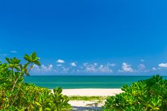 White sand beach , turquoise water and green lush trees on the foreground in south of Thailand.  stock images