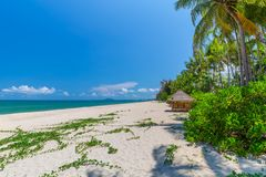 White sand beach , turquoise water and green lush trees on the foreground in south of Thailand.  royalty free stock image