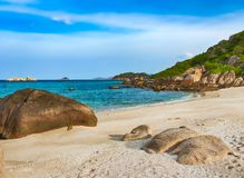 White sand beach. Vietnam royalty free stock image