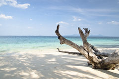 White sand beach Royalty Free Stock Photos
