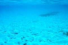 A white sand bottom in clear water Stock Images