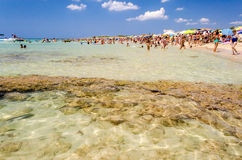 A white sand bottom in Salento beautiful sandy beach, Italy Royalty Free Stock Photo