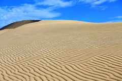 White sand dune under clear blue sky and white cloud. White Sand dunes with wind pattern and motorbike track under clear blue sky and white fluffy cloud at Stock Photo
