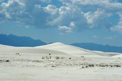 White sand dunes stock images
