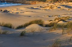 White Sand dunes in a beach stock images