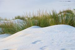 White Sand dunes in a beach royalty free stock images
